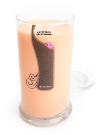 Autumn Splendor Jar Candle - 16.5 Oz.