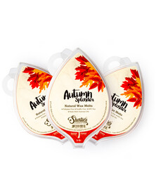 All Natural Autumn Splendor Soy Wax Melts 3 Pack