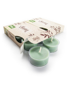 Bayberry Fir Tealight Candles 12-Pack