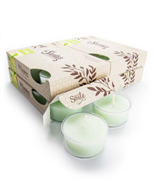 Cucumber Melon Tealight Candles 24-Pack
