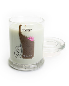Eucalyptus Leaf Jar Candle - 6.5 Oz.