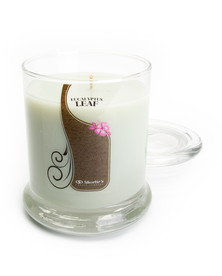 Eucalyptus Leaf Jar Candle - 10 Oz.