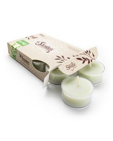Eucalyptus Leaf Tealight Candles 6-Pack