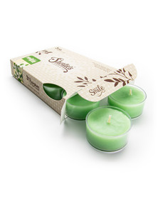Mistletoe Moments™ Tealight Candles 6-Pack