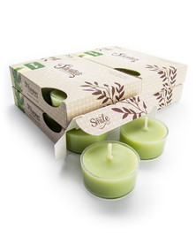 Tahoe Pine Tealight Candles 24-Pack