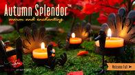 FOTM: Autumn Splendor
