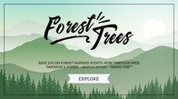 20% off Forest Scents