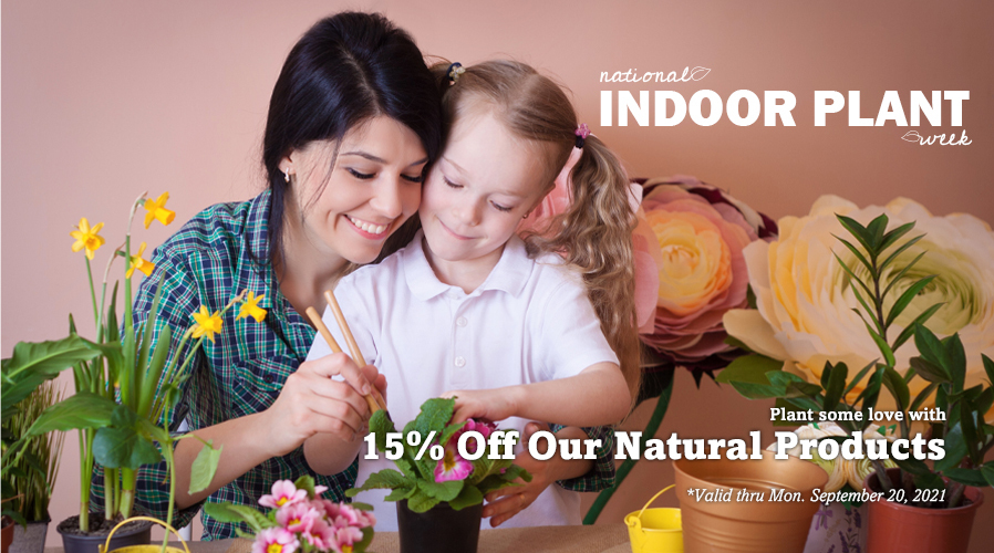 National Indoor Plant Week